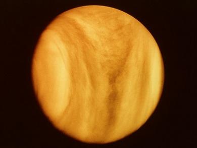 Venus-01.jpg